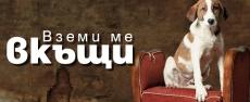 Асен Блатечки се снима за кампанията 'Вземи ме вкъщи'