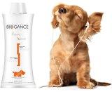 Biogance Tawny Apricot Shampoo 250ml