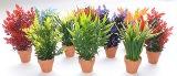 Sydeco Aquaplant Small in pot 18cm изкуствено растение 349716