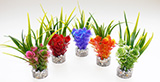 Sydeco Nano Fiesta Flower 14см изкуствено растение 380091