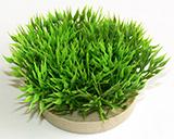 Sydeco Green Moss 7см изкуствено растение 349720